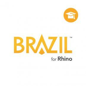 Brazil Educational