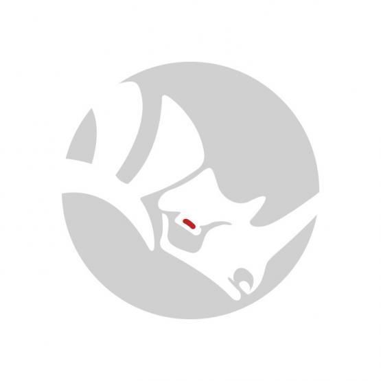Corso online di Rhino livello 1